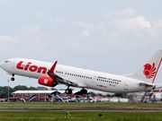 Indonesia: 10 passengers injured after false bomb claim on plane