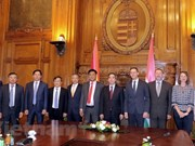 Vietnam wishes to bolster investment cooperation with Hungary