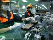 More than 11,000 new firms established in May