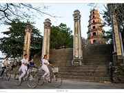 Photo book of Vietnamese pagodas rolled out in HCM City