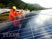 Work starts on Gelex Ninh Thuan solar farm