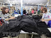 Vietnamese garment sector maintains growth in traditional markets