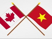 Canadian expert: new opportunities for Vietnam-Canada ties