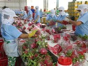 Ministry optimistic about fruit-veggie export prospects