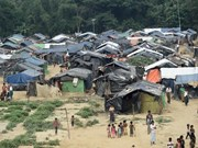 Myanmar, UN sign MoU on return of Rohingya refugees
