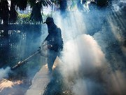 Thailand's northeast faces risk of dengue fever outbreaks