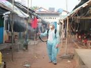 Dengue outbreak risks remain despite fall in new cases