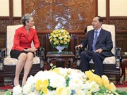 Ambassador: Vietnam – trustworthy partner of Netherlands