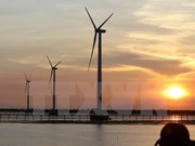 Vietnam learns international experience in wind power development
