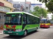 Three minibus routes to be piloted in Hanoi