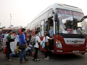 HCM City's buses flout safety laws: authorities
