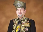 Malaysian King takes pay cut to help slash country's debts