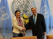 UN Secretary-General hails Vietnam's commitment to realising SDGs