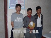 Kon Tum: three arrested for trafficking crystal meth