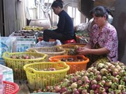 Binh Duong expands production of specialty mangosteens