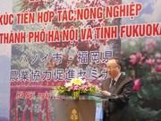 Hanoi, Fukuoka boost agricultural cooperation