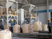 Nhan Co alumina plant achieves 3.2 trillion VND in revenue