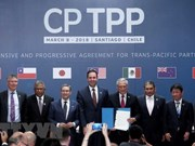 Japan completes domestic procedures to ratify CPTPP