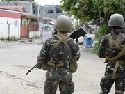 Philippines: 12 terrorists killed