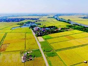 Agricultural land use market needs updated legal framework