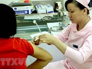 A/H1N1 – one of three most common seasonal flu strains in Vietnam