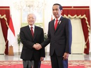 Vietnam, Indonesia eye stronger strategic partnership