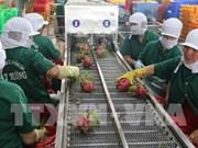 Vietnamese farm produce see big chances in Korean market
