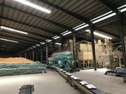 Vietnam wins contract to export rice to RoK