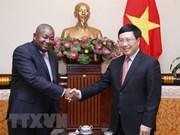 Deputy PM Pham Binh Minh welcomes new Mozambican ambassador