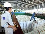 Gas-power-fertiliser complex – major contributor to Ca Mau province