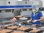 More opportunities for poultry export to Japan