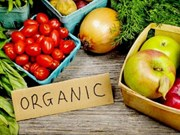 Indonesia strengthens export of organic products
