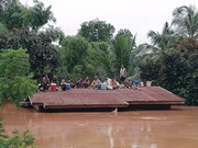 No Vietnamese citizens harmed in dam incident in Laos