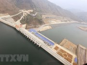 EVN: All hydropower dams are safe