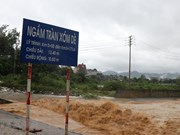 Storm Son Tinh causes damage worth 270 billion VND to road systems