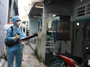 Ho Chi Minh City records first death to dengue fever in 2018