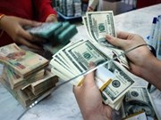 Reference exchange rate up 10 VND at week's beginning