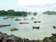 Hai Phong: Tourist arrivals surge 19.9 percent in 7 months