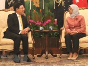 Deputy PM Pham Binh Minh meets Singaporean leaders