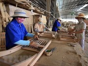 Vietnam exports timber products to 120 countries, territories