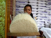 Cambodia's rice export down in 7-month period