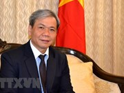 Vietnam-India ties enjoy substantive development: Ambassador