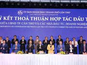 Vietnam Airlines team up with Can Tho to develop aviation logistics