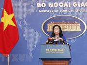 Vietnam resolutely opposes China's recent activities in Hoang Sa