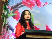 Vietnam-Myanmar relations see significant progress: Ambassador