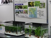 Toshiba Group Holds 21st Environmental Exhibition