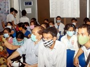 A/H1N1 flu cases increase to 1,576