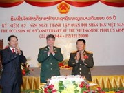 Vietnam celebrates Army Day in many countries