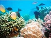 460 bln VND earmarked for marine reserves