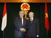 VN, Indonesia develop comprehensive cooperation